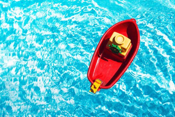 Le skimmer : tout ce que vous devez savoir 1